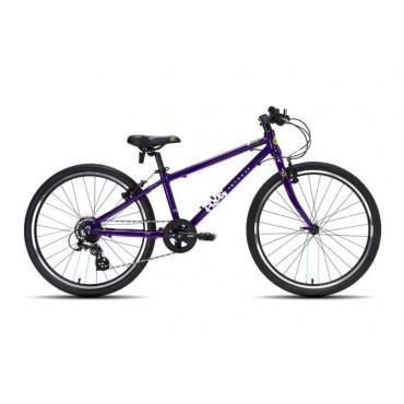 Frog 62 purple